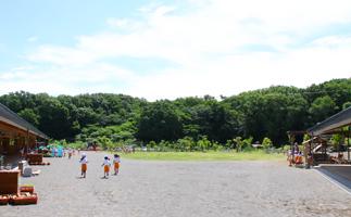 自然教育 〜大自然の中で思い切り遊ぶ〜