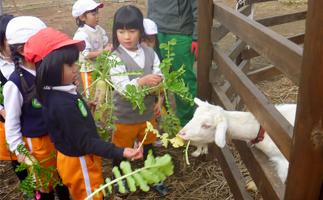 環境教育 〜遊びや生活を通して環境を学ぶ〜